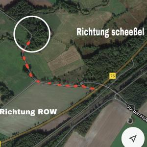 Wald zwischen ROW und Scheeßel