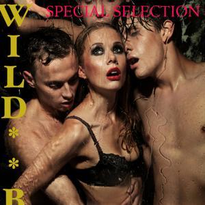 Wild Boys - Wild HÜ